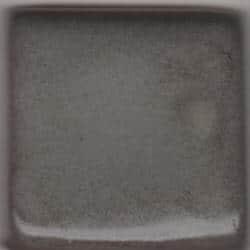 Steel Gray Shino